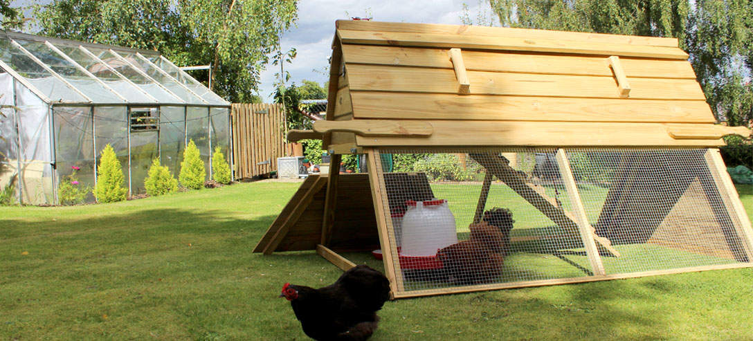 The Boughton Chicken Coop has a door to allow chickens to free-range