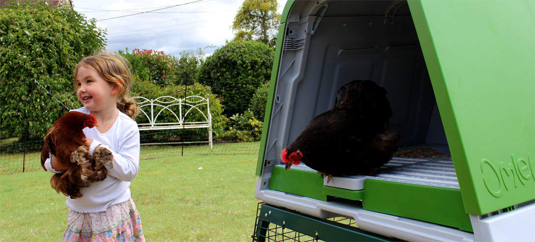 The Eglu Go UP back door makes it easy to access your chickens