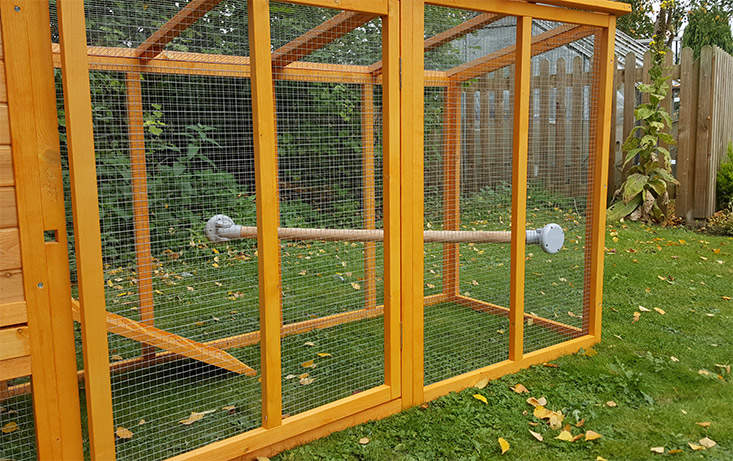 Any chicken coop can be improved with a perch