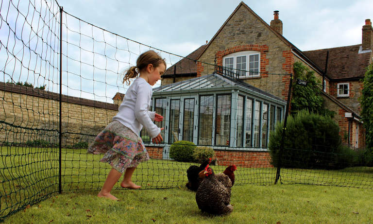 Omlet Chicken Fencing provides the perfect area for chickens and children!