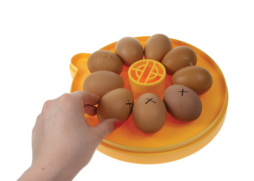 Die Eier in einem Brinsea Mini Eco Inkubator drehen