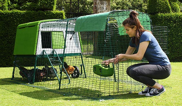 Mit der zweigeteilten Auslauftür können Sie Futter und Wasser auffüllen, ohne dass die Hühner entwischen.