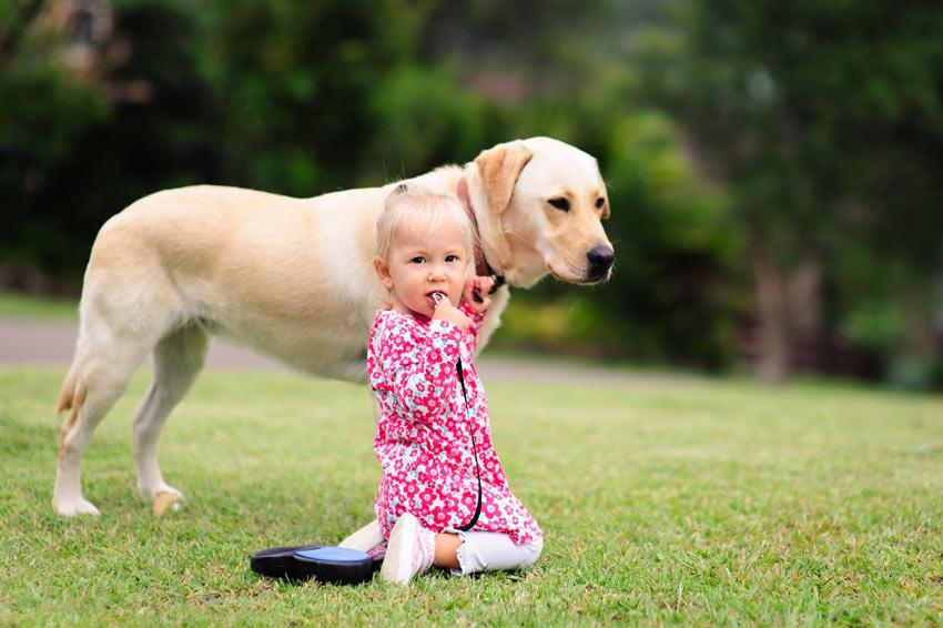 Ein kleines Mädchen mit ihrem Labrador