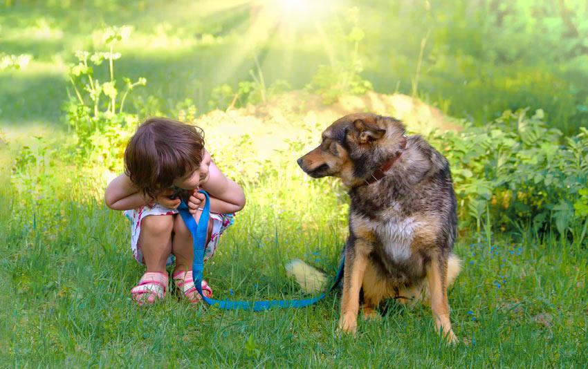 Ein junges Mädchen führt ihren Hund spazieren