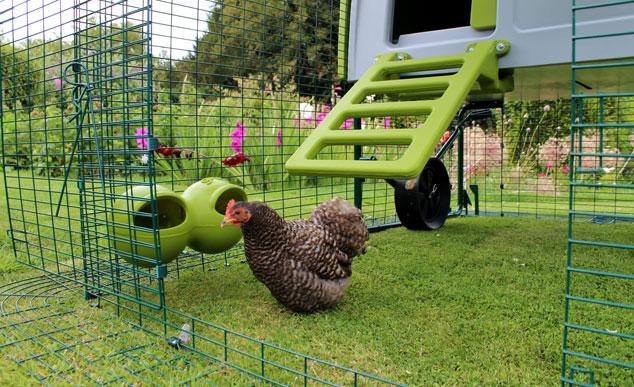 Die Omlet Futter- und Trinkbehälter sind geschickt an den Auslauf des Eglu Hühnerstalls befestigt