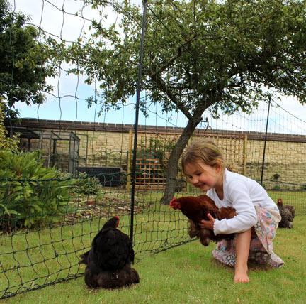 Kinder lieben ihre erste Begegnung mit ihren neuen Hühnern