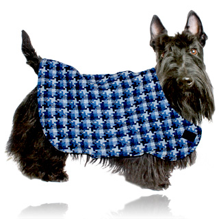 Die richtige Ernhrung des Hundes DOGS - dogs-magazinde